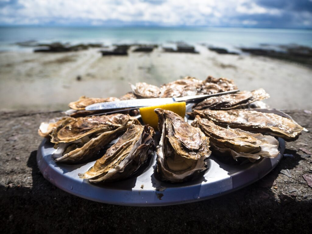 Scottish oysters with lemon on a plate